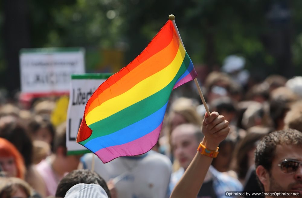 Michigan Court Delays Decision on Gay Marriage Ban